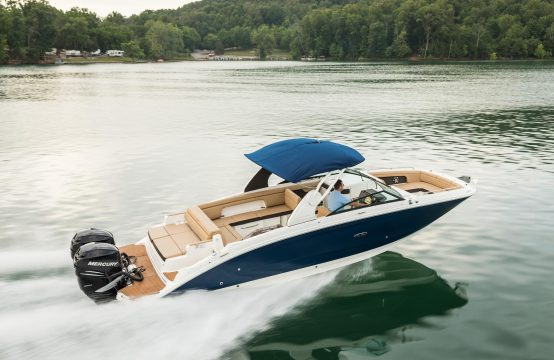 Sea Ray 290 SDX Outboard