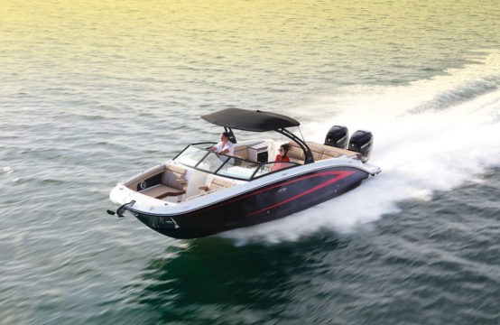 Sea Ray 290 SDX Outboard