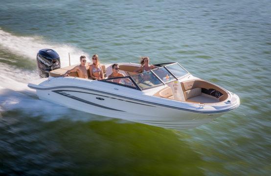 Sea Ray 210 SPX Outboard