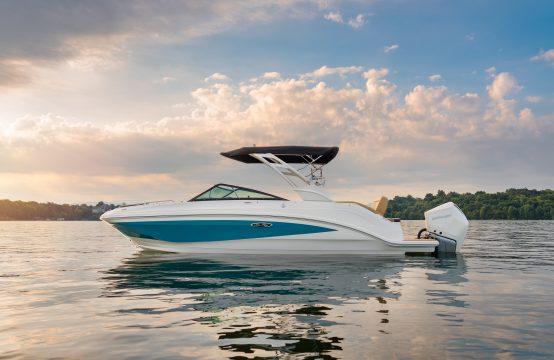 Sea Ray 250 SDX Outboard
